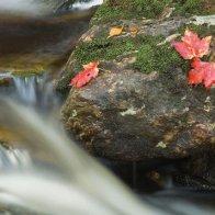 4612-Waterfall2.jpg