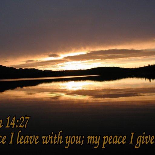 6471-PeaceIGive