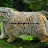 I Hate Sam Broadcaster