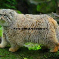 I Hate Sam Broadcaster