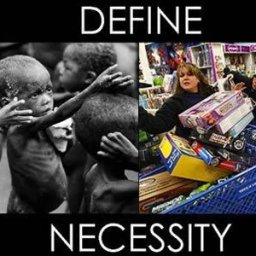 define-necessity-starving-african-children-vs-north-american-greed-shopping1.jpg