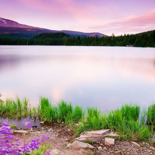 colorful-nature-facebook-cover