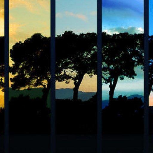 Nature-Spectrum