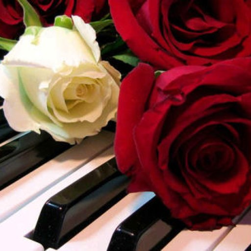 piano_roses