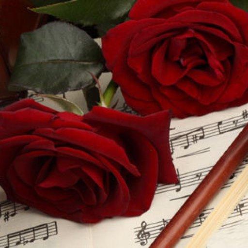 violin_red_roses