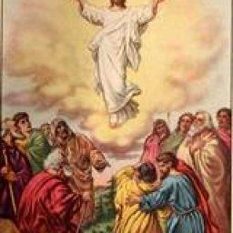 Jesus Went To Heaven