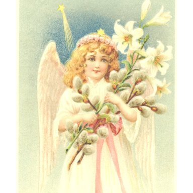 WHO TEACHES ANGELS HOW TO FLY