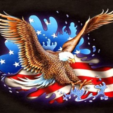 WINGS ON THE EAGLE