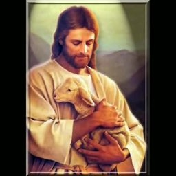 The Lamb In His Arms