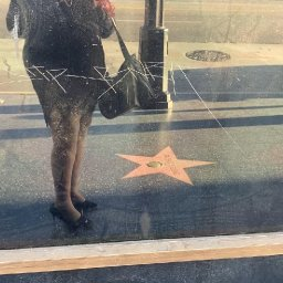 deejaniccaG. on the Hollywood Walk of Fame Video Clip    08/14/20